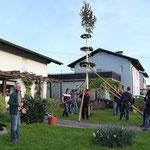 Baum aufstellen