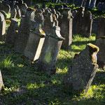 Judenfriedhof Floss