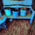 Blaue Gartenbank