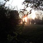 Mühle im Sonnenaufgang.
