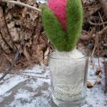 kleine Hyazinthe im Glas