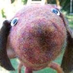 Schweinsbär