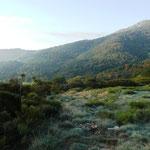 paysages du Tanargue