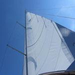 Unser neues Großsegel von uksails Super !!