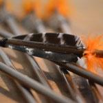 Bambuspfeile