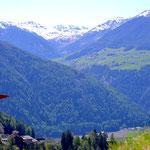 Aussicht auf Egg - Südtirol