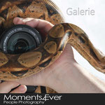 Galerie Moments4ever