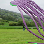 Drachenfest Wehntal 2013
