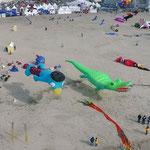 Kroki aus der Luft in Berck von G&D fotografiert 2012