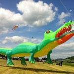 Wehntaler Drachenfest 2012