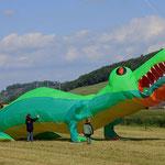 Kroki am Wehntaler Drachenfest von Haggy fotografiert