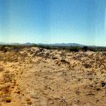 Reserva de la Biósfera El Pinacate, Desierto de Sonora. Mina abandonada.