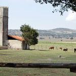 Hacienda Tenexac, Tlaxcala.
