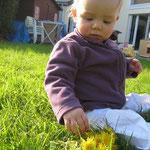 louise découvre l'herbe et le pissenlit !
