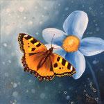 Schmetterling - Kleiner Fuchs