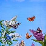 Schmetterlingsflieder im Frühling