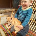 Selbst bei Jarons Würgegriffen hört man von den Katzen nur ein Schnurren.