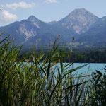 Schilf und Berge