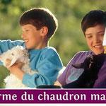 Le Chaudron Magique à Brugnac