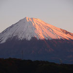 朝焼けの富士山です