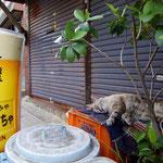 那覇市桜坂