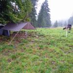 Weide und Zelt im Regen