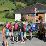 Start in Luchsingen
