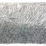 ais, 100 x 70 cm, 2018