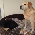 Oskar und große Freundin