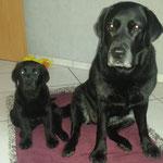 Kira (links) und Ebby