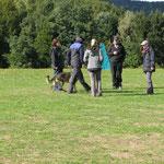 Hares im Trainingslager 2018