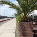 Buffkaje – Flaniermeile und Rennstrecke am Europahafen