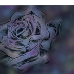 「薔薇」 2009年作