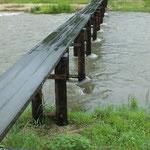 今川上流の一本橋。大丈夫でしょうか!