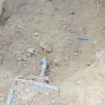 植木の掘り取り後