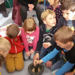 Was aus einem Korn alles werden kann, erfuhren die Kinder der 1b und ihrer Partnerklasse