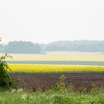 Bild: Blick über die Felder