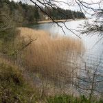 Bild: Blick über die Schlei bei Missunde in Schleswig Holstein - Foto 3