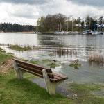 Bild: Blick über die Schlei bei Missunde in Schleswig Holstein - Foto 2