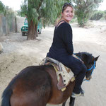 Ballade de 5h à cheval à Tupiza