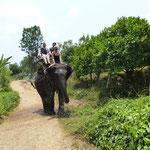 Balade à dos d'éléphant compris dans le trek