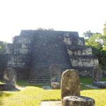 Tikal et ses temples Maya