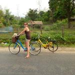 Nos vélos sans vitesses