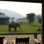 La vue depuis la terrace le matin...