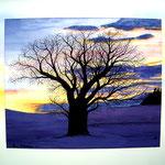 Winterbaum, Airbrush, Tusche/ Aquarell, 70 x50 + entspiegeltes Glas, Rahmen, 350,- €