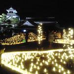 Kochi Castle, 高知城 (Dec. 2012)