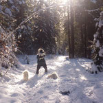 Leni auf mir, Sprung in die Arme üben wir nur im Wald mit weichem Untergrund. Lexi traut sich, im Gegensatz zur Riga, auch mir in die Arme zu springen.