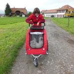 04.11.2013 Erster Ausflug ein Spaziergang ohne Auto