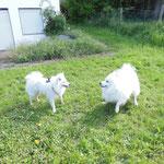 Leni und Pascha