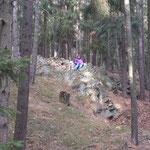 Riga fand die Spaziergänge im Wald super. Viiiiiele interessante Wildspuren (z.B: Wildschweine,Hirsche)